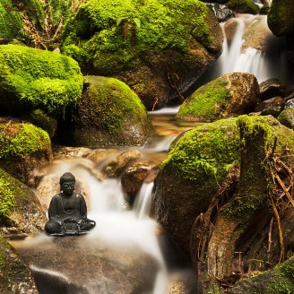 Buddha And Stream