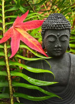 Buddha With Red Maple
